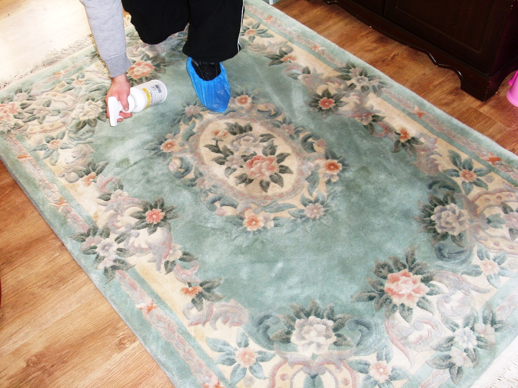 photo cleaning effective stain lawrence for removal alliance rug carpet
