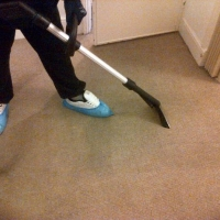 Carpet Cleaning Northampton Carpet Cleaner Northampton