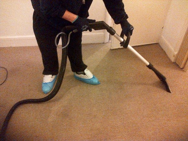 February 2014 Carpet Cleaning Solutions