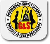 Profesional Carpet Cleaners